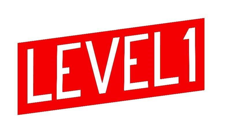 Level 1